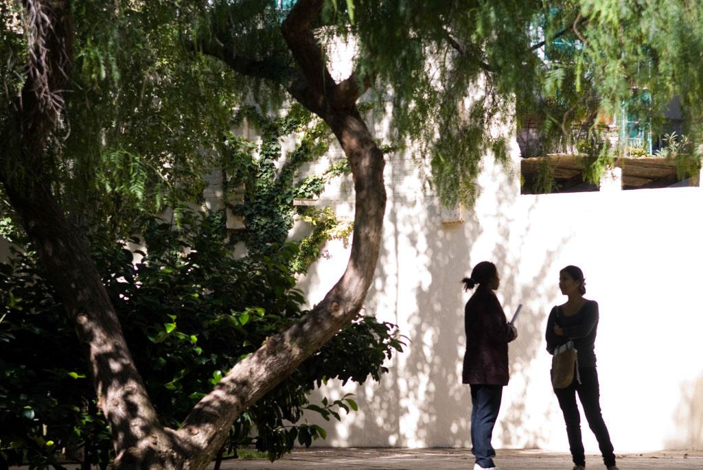 Spain, Barcelona. The Gardens and Public Courtyards: Garden Sebastià Gasch (c/Rocafort, 87).