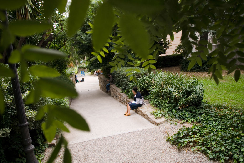 Spain, Barcelona. The Gardens and Public Courtyards: the garden of the University of Barcelona (plaza Universidad).