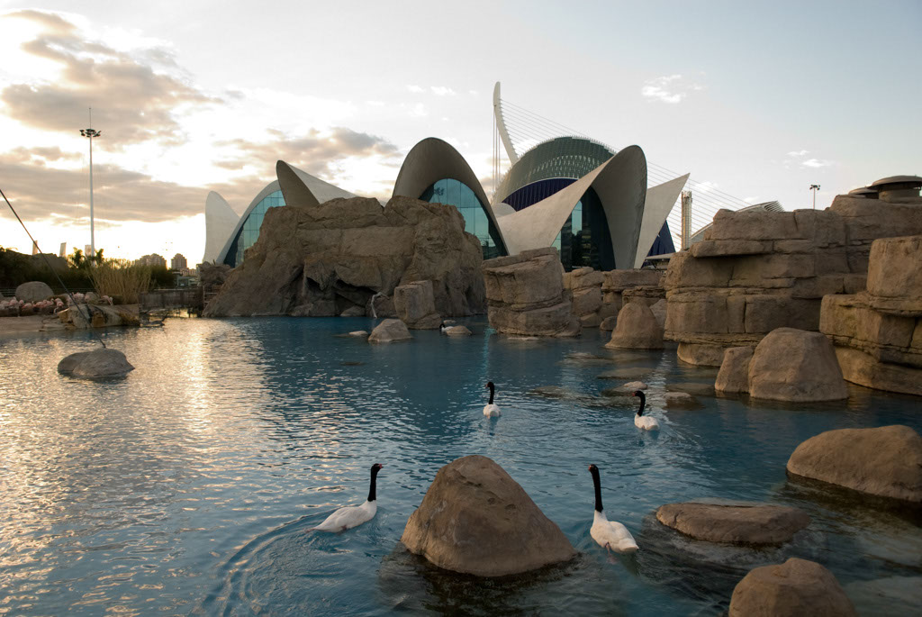 Valencia, Spain. City of Arts and Sciences. L'Oceanografic, a marine complex that is the largest in Europe..